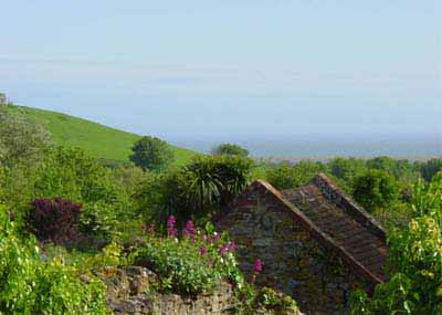 Abbotsbury - view from our bedroom window, by Andrew Green